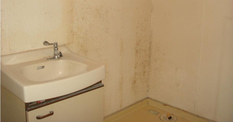 洗面・洗濯機置場の水回りは使用してれば必ずこんな感じに汚れていきます。